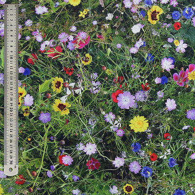 Wildflower Meadow Digital Print Fabric - Quality Upholstery & 100% Cotton