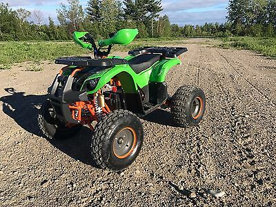 Adult 1200W Brushless Electric Atv 48V Quads Ride Toy For Teeagers Free Shipping
