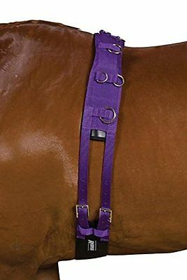 Kincade Deluxe Equigrip Full Size Lunge Roller: Purple