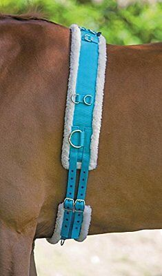 Shires Nylon Roller With Fleece Padding - Blue: Cob