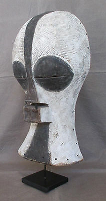 Amazing Antique Huge SONGYE KIFWEBE Mask - CONGO - circa late 1800