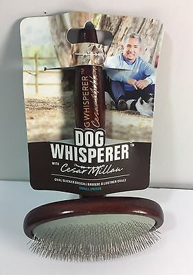 Dog Whisperer Cesar Millan Oval Slicker Brush Small Metal Wood Dogs Shedding