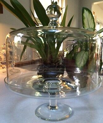 "Pedestal Cake Stand with Dome Lid Clear Glass 11 3/4"" Tall 2 Piece"