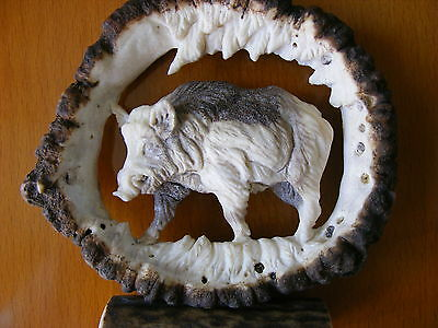 HAND CARVED ANTLERS, WILD BOAR , decor taxidermy skull hunting