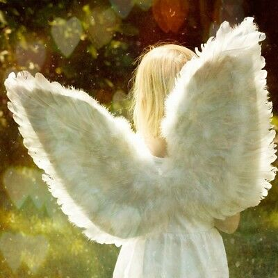 ANGEL WINGS Fragrance Oil for Candles, Soaps, Melts - 10ml to 2.5L