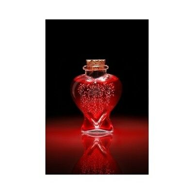 LOVE SPELL Fragrance Oil for Candles, Soaps, Melts - 10ml to 2.5L