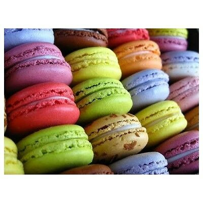 MACARON Fragrance Oil for Candles, Soaps, Melts - 10ml to 2.5L