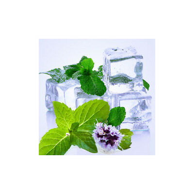 SPEARMINT Fragrance Oil for Candles, Soaps, Melts - 10ml to 2.5L