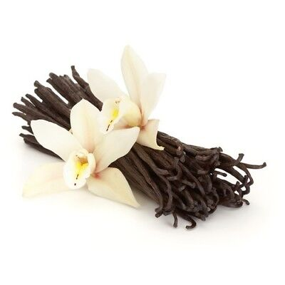 SIMPLY VANILLA Fragrance Oil for Candles, Soaps, Melts - 10ml to 2.5L