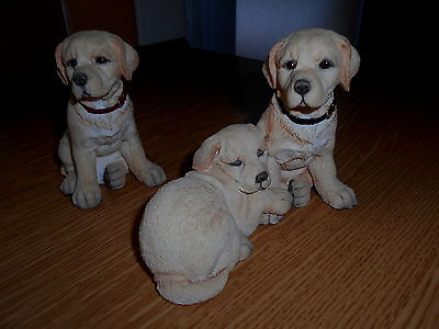 Three Yellow Labrador Puppies by Country Artists