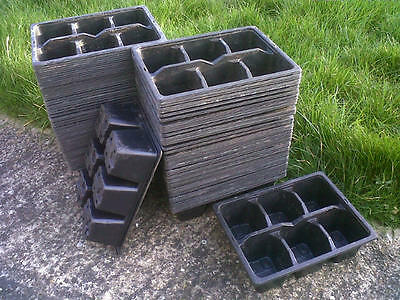 60 x 6 CELL PLASTIC PLANT PACK TRAYS, ideal for vegetable or bedding plants