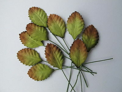 50 GREEN BROWN LEAVES Autumn Rose Wire Stem Mulberry Paper Craft Topper R4YB