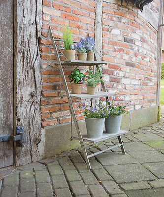 Aged Metal Garden Plant Ladder Stand by Fallen Fruits, Conservatory/Garden/Home