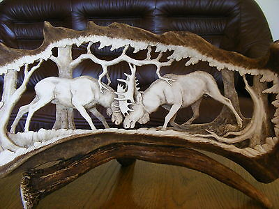 HAND CARVED ANTLERS, BULLFIGHT , decor taxidermy skull hunting
