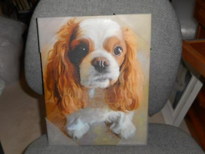 Cavalier King Charles Spaniel, Wall Art Print on CANVAS by Robert McClintock