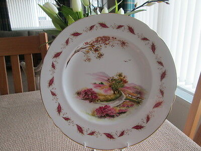 """Large Shelley Gaiety Plate 10.75 """" Wide"""