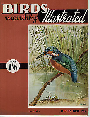 Birds Illustrated Monthly Magazine 1956 December Magpie As A Pet Hoopoe 2628F