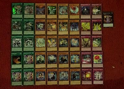 Yu-Gi-Oh Ghostrick and Bujin Deck - 40 cards complete BONUS 5 cards