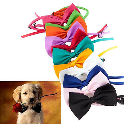 Dog Cat Accessories Bow Tie Adjustable Collar (INT)