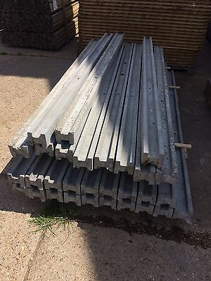 8Ft Concrete Fence Posts