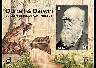 Jersey 2017 Durrell Darwin Initiative portrait nature frog trees   ms1v mnh **