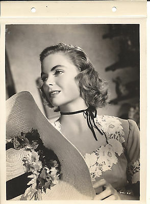Dorothy Mcguire 8X10 Original Linen Back Photo Cc21772 6-147