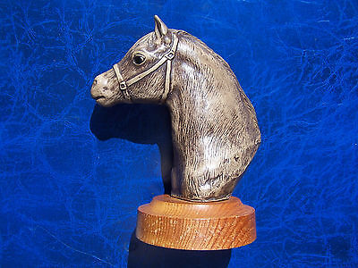 Poole Pottery Pony Series Ornament On Plinth Of ' Welsh Mountain ' Horse In Vgc