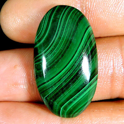 EXCELLENT!! 54.85cts NATURAL DESIGNER GREEN MALACHITE OVAL CABOCHON GEMSTONE