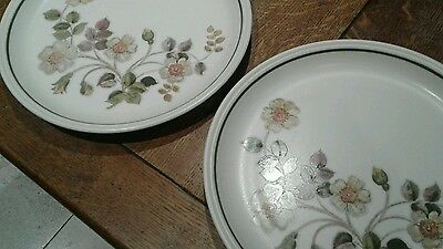 Two Marks Spencer Autumn Leaves Dinner Plates Excellent Condition.