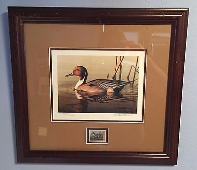 2001 Framed Federal Migratory Bird Duck Stamp W/signed & Numbered Print Sc# Rw68