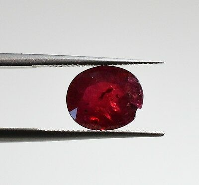 Rubis Naturel Non Chauffé - 1,66 ct - Natural Unheated Ruby