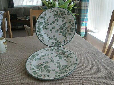 """Bhs Country Vine Set Of 2 Dinner Plates 10.5"""" Wide"""