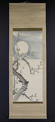 "JAPANESE HANGING SCROLL ART Painting ""Blossoms and Moon"" Asian antique  #E5846"