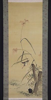 "JAPANESE HANGING SCROLL ART Painting ""Kingfisher"" Asian antique  #E5841"