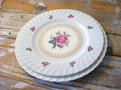 Vintage Burleigh Ware Pink Roses China Dinner Plates with Blue Swirl Pattern