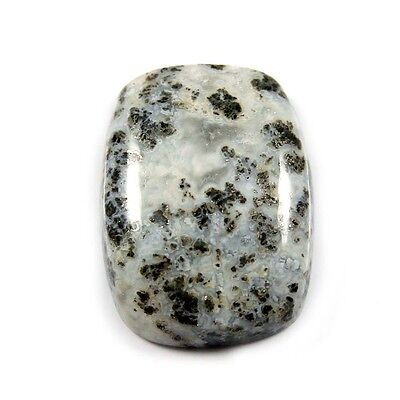 20.10 cts Excellent Rare Natural Fossil Pyrite Octagon Loose Gemstone Cabochon