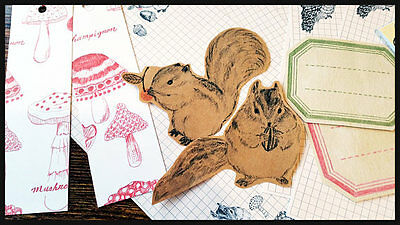 Woodland Letter Writing Stationery Set Cute Memo Pad,Paper Stickers,Vintage Note