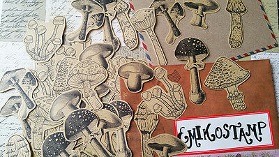 Vintage Mushroom,Woodland Planner Stickers Scrapbook Decoupage,Card Making