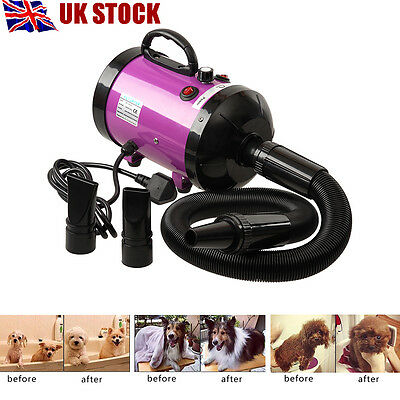Low Noise 2800W Pet Dog Cat Grooming Hair Dryer Hairdryer Blaster Blower Purple