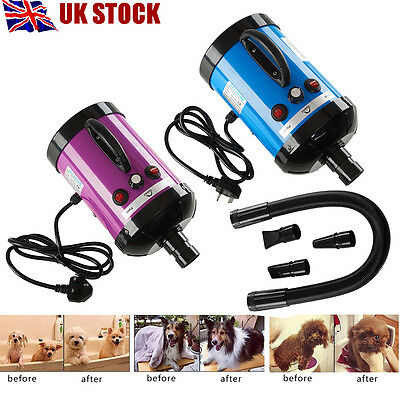 Lowest Noise 2800W Pet Dog Cat Grooming Hair Dryer Hairdryer Blaster Blower