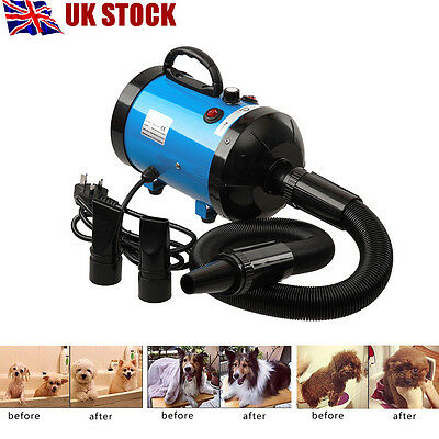 Lowest Noise 2800W Pet Dog Cat Grooming Hair Dryer Hairdryer Blaster Blower Blue
