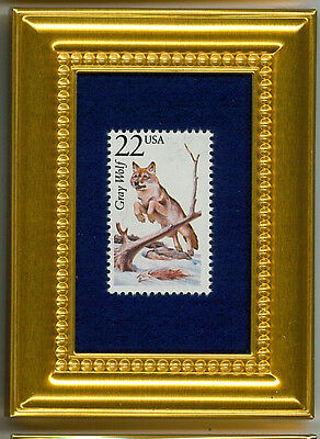 Gray Wolf A Glass Framed Collectible Postage Masterpiece!