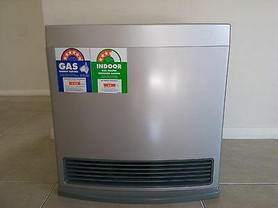 Rinnai Enduro 13 Gas Heater