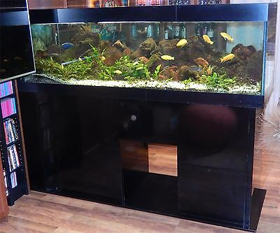 Acquario 700 lt completo + mobile + accessori