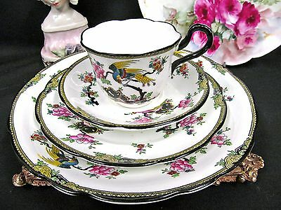 Collingwoods Tea Cup And Saucer Trio Exotic Bird Floral Teacup Pattern Plate