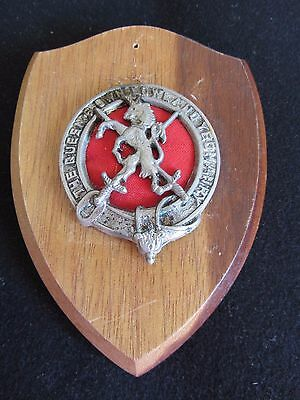 Scottish Regimental Cap Badge Queen's Own Lowland Yeomanry mounted on Shield