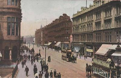 Royal Avenue Belfast Co Antrim Northern Ireland 1904 Animated Trams