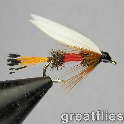 1 dozen (12) - Royal Coachman - WET FLY