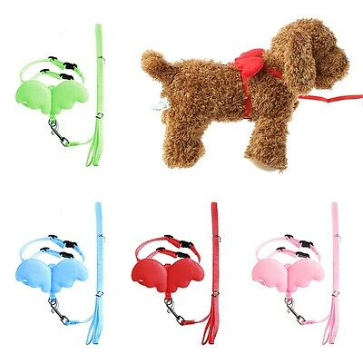 Pet Dog Traction Rope Breast Strap Cute Angle Wings Puppy Leashes and Collars