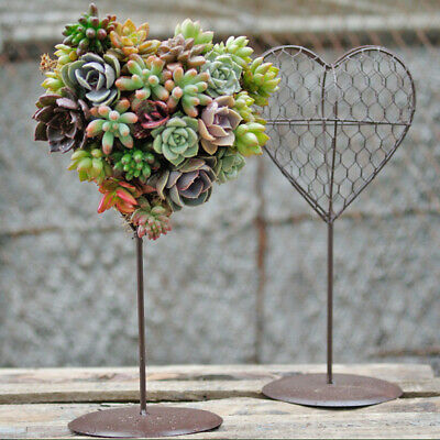 Rustic Metal Iron Frame Wire Heart Shape Succulent Pot Planter Box 30cm